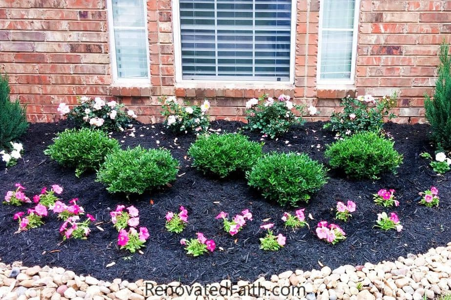 Best Front Yard Landscaping Ideas On A Budget Diy Landscape Design